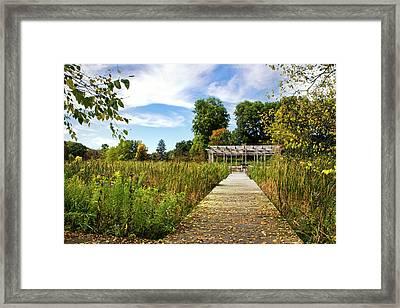 Fall Pergola Framed Print