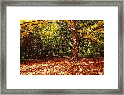 Fall Picnic Framed Print