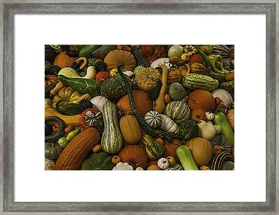 Fall Pile Framed Print by Garry Gay