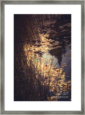 Framed Print featuring the photograph Fall Pond by The Forests Edge Photography - Diane Sandoval