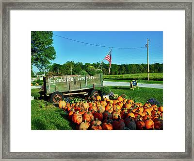 Fall Pumpkins Framed Print by Mountain Dreams