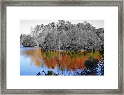 Fall Reflection Framed Print by Don Prioleau