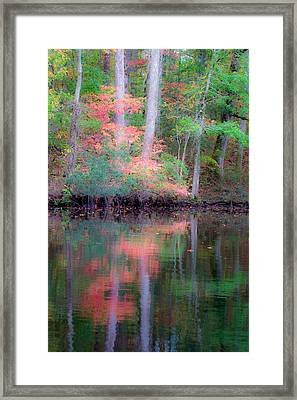 Framed Print featuring the photograph Fall Reflections by Bob Decker
