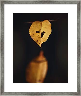 Framed Print featuring the photograph Fall Reflections by Eduard Moldoveanu