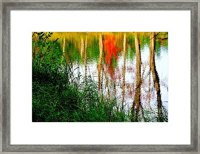 Framed Print featuring the photograph Fall Reflections by Elfriede Fulda