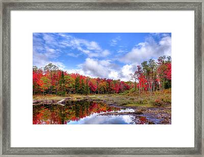 Fall Reflections In The Adirondacks Framed Print by David Patterson