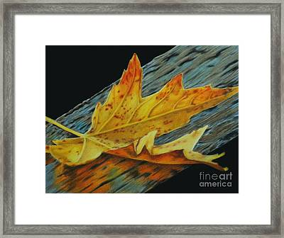 Fall Reflections Framed Print
