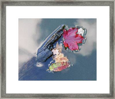 Framed Print featuring the photograph Fall Reflections Leaves In The Water by Irina Sztukowski