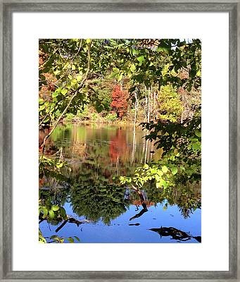 Fall Reflections Framed Print by Nancy Landry
