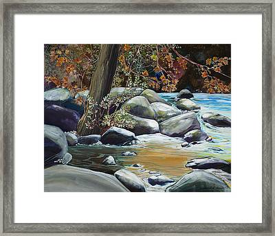 Fall Reflections Framed Print by Sharole Ewing