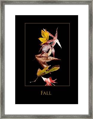 Fall Framed Print by Richard Gordon