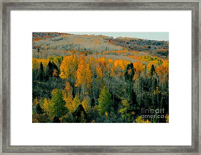 Fall Ridge Framed Print by David Lee Thompson