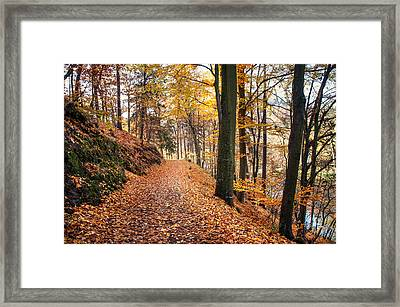 Fall Road Along The Lake Framed Print