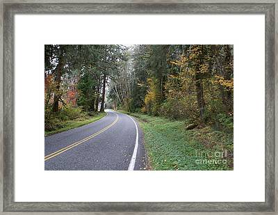 Fall Road Washington Framed Print