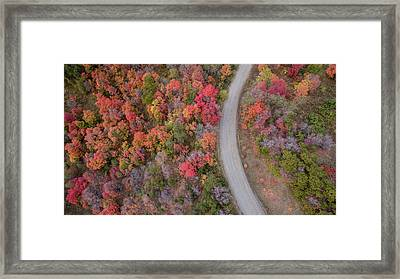 Fall Road Framed Print