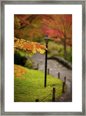 Fall Serenity Framed Print by Mike Reid