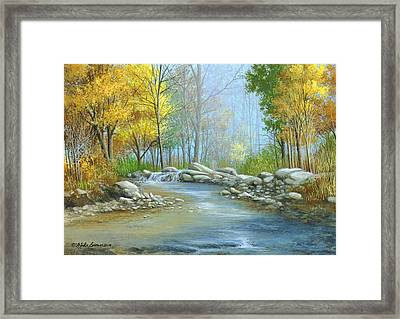 Fall Solitude Framed Print