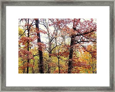 Fall Splatter Framed Print