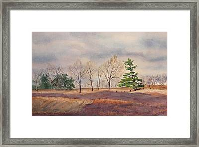 Fall Tapestry Framed Print by Debbie Homewood