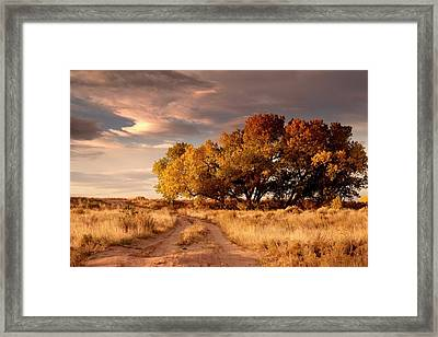 Fall Time.. Framed Print by Al  Swasey