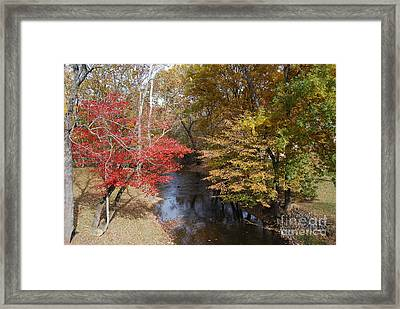 Fall Transition Framed Print by Eric Liller