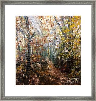 Fall Trees Framed Print