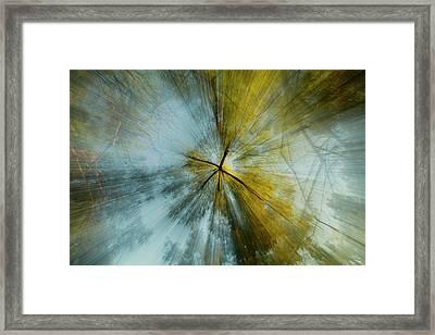 Fall U P  Framed Print