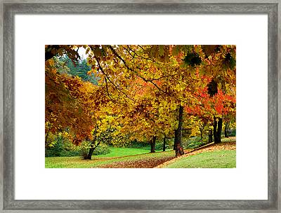 Fall Framed Print by Val Jolley