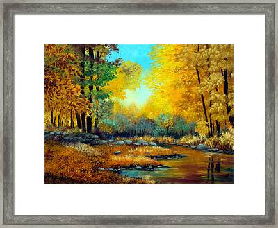 Fall Woods Stream  Framed Print by Laura Tasheiko