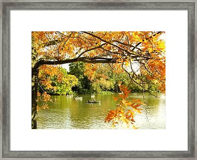 Fall Framed Print by Yannick Guerin