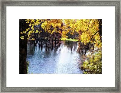 Fall Yellow Boarder Framed Print