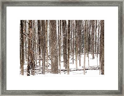 Fallen 5 - Framed Print