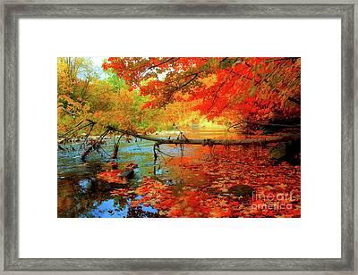 Fallen Autumn Tree Framed Print by Anthony Djordjevic