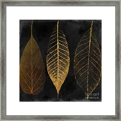Fallen Gold II Autumn Leaves Framed Print by Mindy Sommers