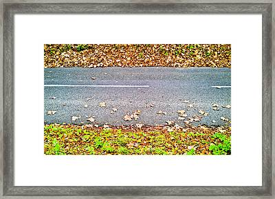 Fallen Leaves Framed Print by Tom Gowanlock