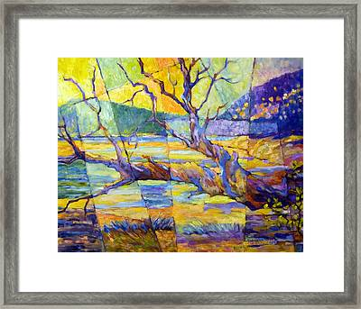 Fallen Madrone Framed Print by Peggy Wilson