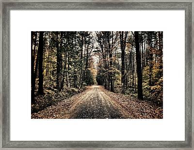 Fallen Road Framed Print by Nathan Larson