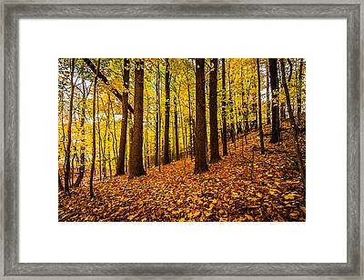 Framed Print featuring the photograph Fallgenic by Robert Clifford