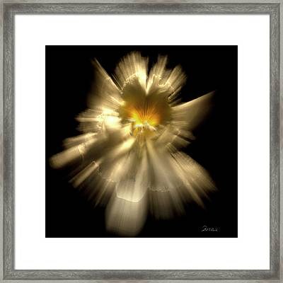 Falling Angel Framed Print