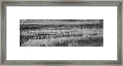 Framed Print featuring the photograph Falling But Standing by Steven Santamour