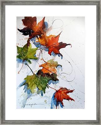 Falling Down    Framed Print by Sandra Strohschein