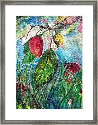 Falling Fruit Framed Print by Mindy Newman