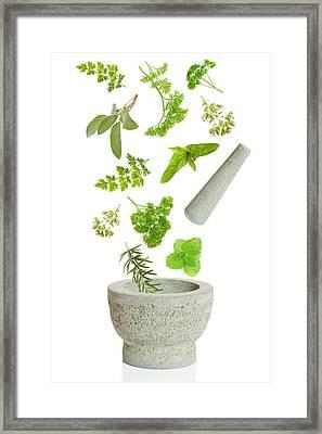 Falling Herbs Framed Print