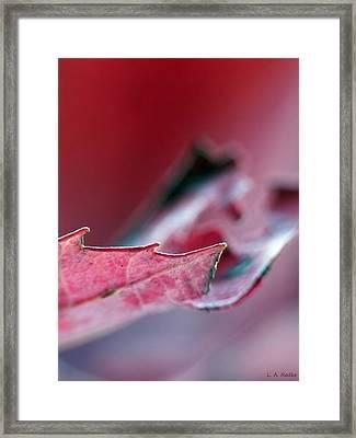 Falling I Framed Print
