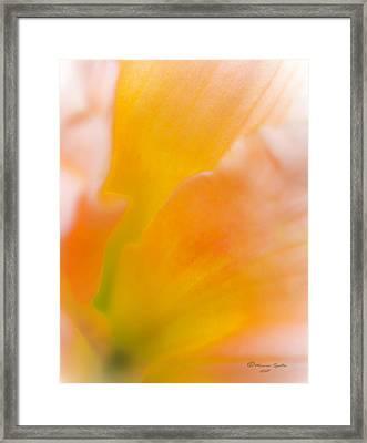 Falling-in Framed Print