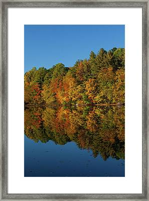 Falling Into The Reflection Framed Print by Karol Livote