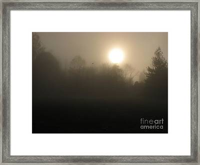 Falling Leaf In Morning Fog Framed Print