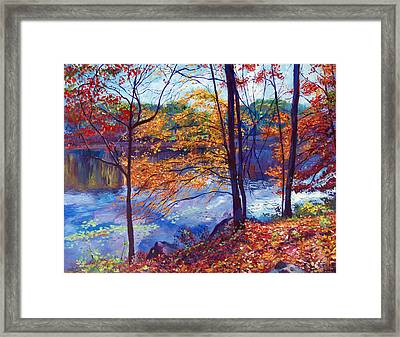 Falling Leaves Framed Print by David Lloyd Glover