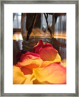Falling Petals Framed Print by Lisa Barr
