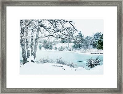 Falling Snow At Lake Murray Framed Print by Tamyra Ayles